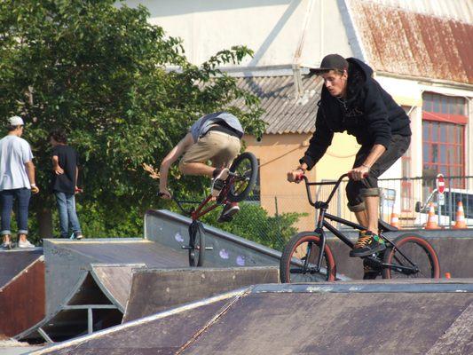 http://www.bratki.com/photos/Lazurka/DSCF5601.JPG