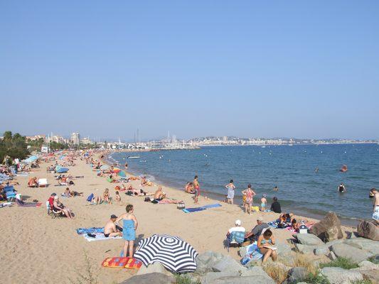 http://www.bratki.com/photos/Lazurka/DSCF5604.JPG