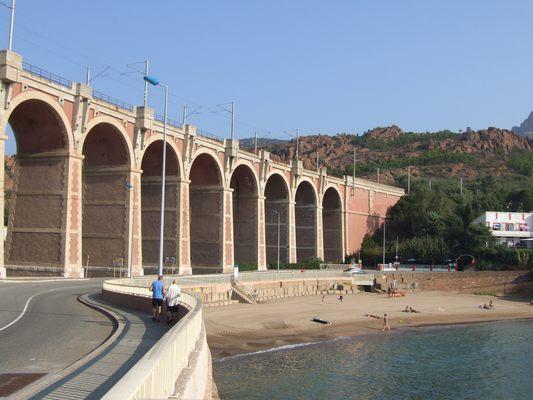 http://www.bratki.com/photos/Lazurka/DSCF5616.JPG