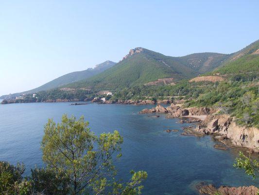 http://www.bratki.com/photos/Lazurka/DSCF5620.JPG
