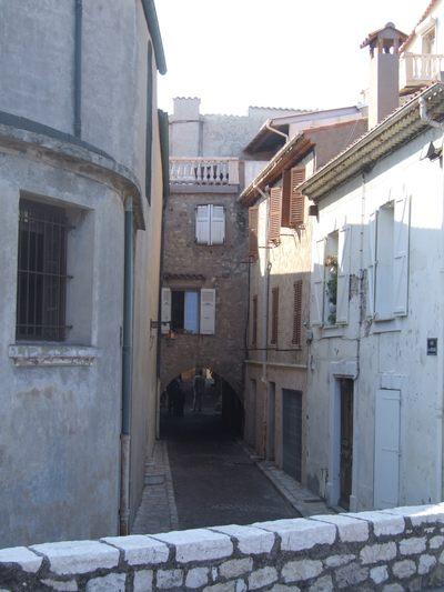 http://www.bratki.com/photos/Lazurka/DSCF5668.JPG