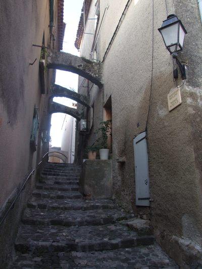 http://www.bratki.com/photos/Lazurka/DSCF5710.JPG