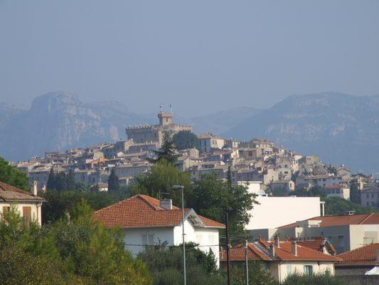 http://www.bratki.com/photos/Lazurka/DSCF5725.JPG