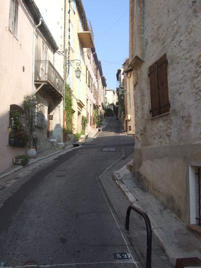 http://www.bratki.com/photos/Lazurka/DSCF5727.JPG