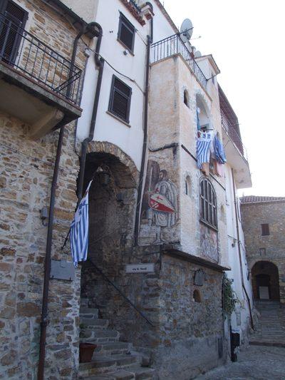 http://www.bratki.com/photos/Lazurka/DSCF5915.JPG