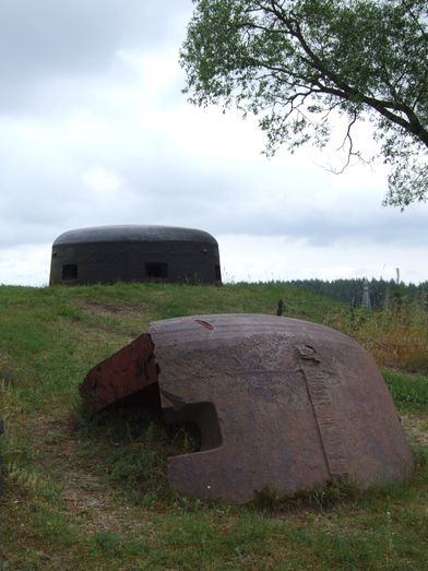 http://www.bratki.com/photos/VP-Poland2/DSCF9557.JPG