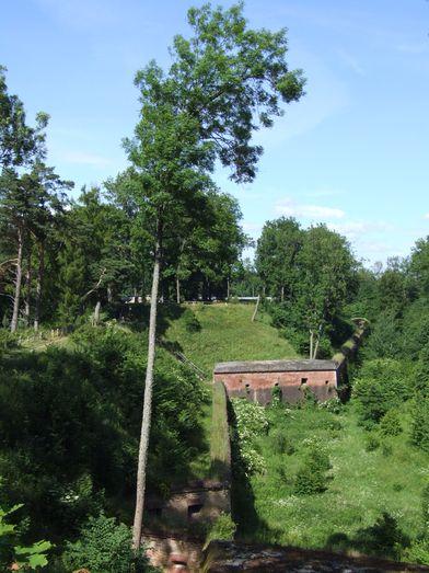 http://www.bratki.com/photos/VP-Poland2/DSCF9612.JPG