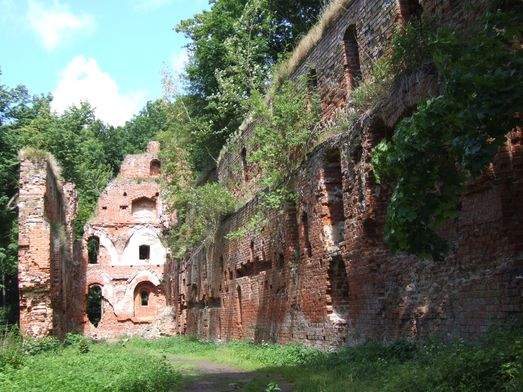 http://www.bratki.com/photos/VP-Poland2/dscfg496.JPG