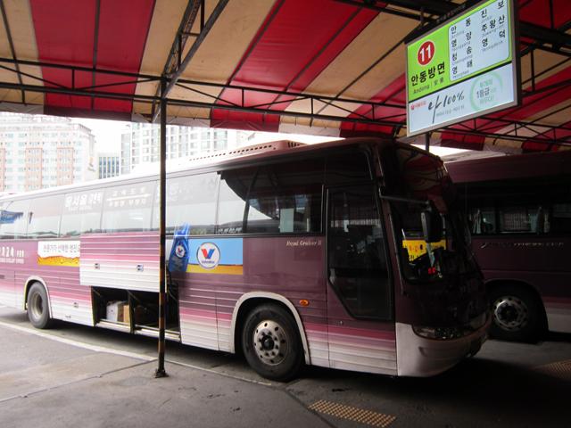 Автобус подан, велосипеды в багажнике.